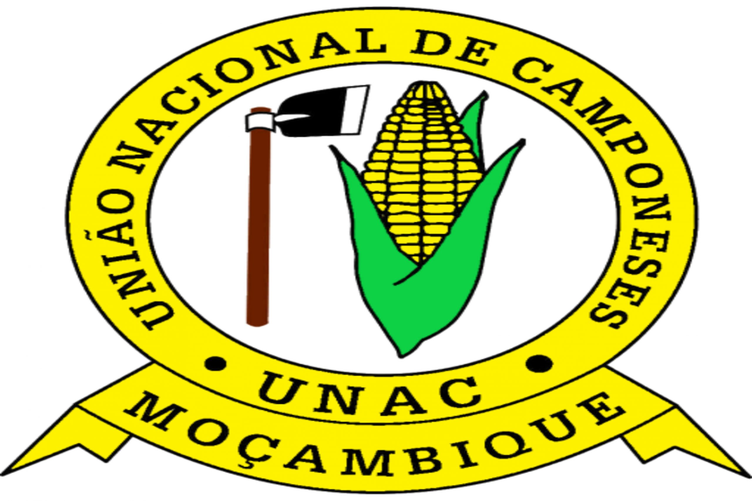 Apoio ao plano Estratégico da UNAC I